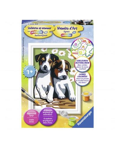 Schilderen op Nummer - Schattige Puppy's