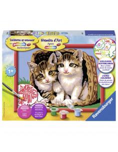 Schilderen op Nummer - Katjes in een Mand