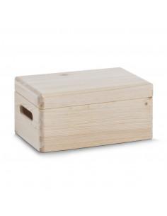 Kist met Deksel Mini