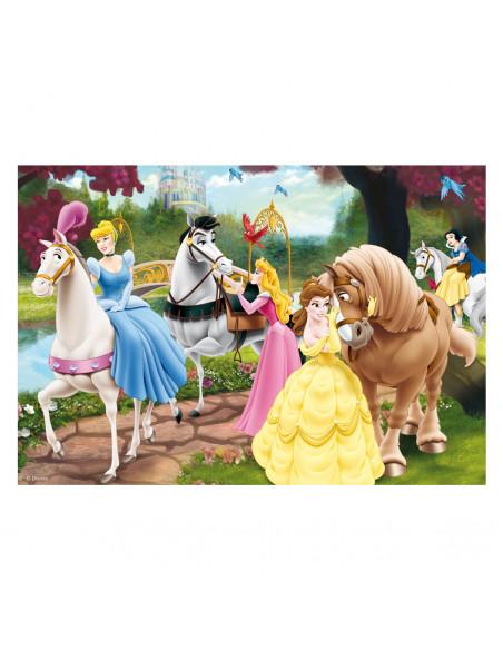 Disney Prinsessen, 2x24st.