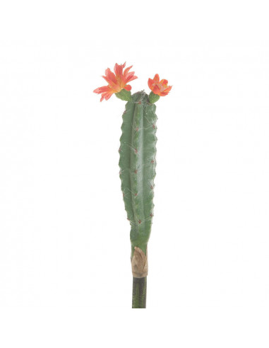 Kunstplant Cactus met Bloem, 23cm