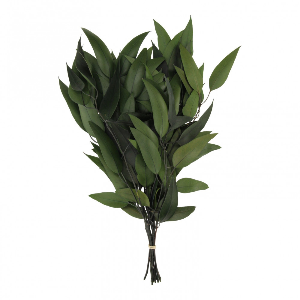 Boeket 'Eucalyptus' Tak Groen