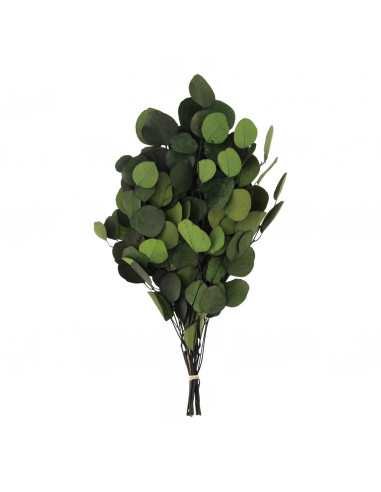 Boeket 'Eucalyptus' Groen