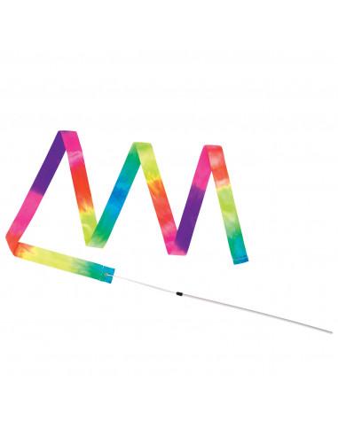 Danslint regenboog