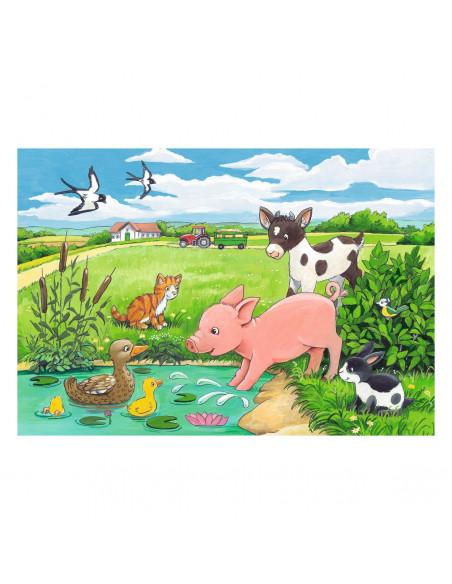 Jonge Dieren op het Platteland, 2x12st.
