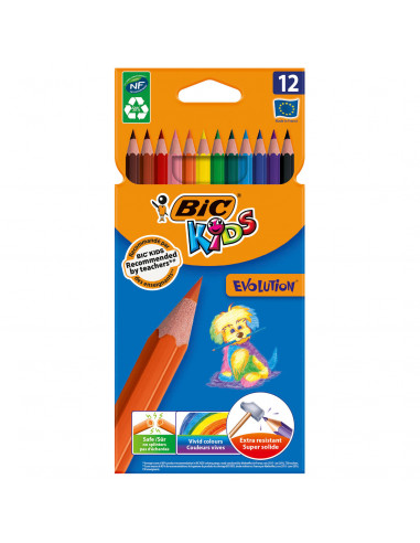 BIC Kids ECOlutions Evolution, 12st.