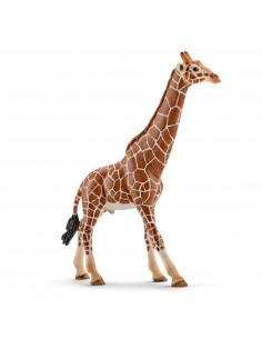 Schleich Giraf Stier